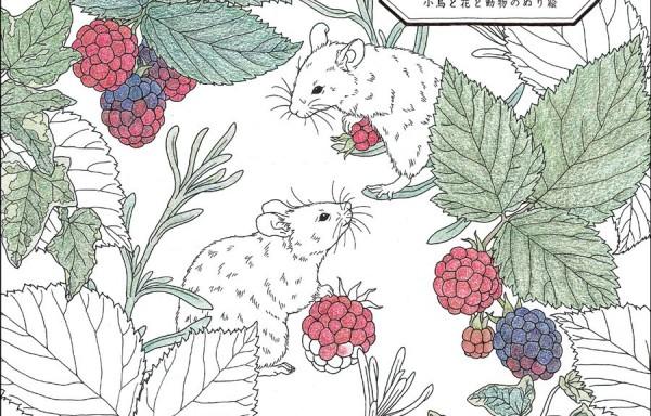 【日本著色繪本】garden-小鳥花朵動物著色繪圖案集