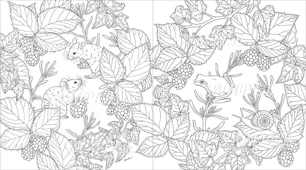 小鳥花朵動物著色繪圖案集2